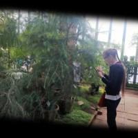 5a_botaniskais_darzs_privata_vidusskola_Klasika_2017_007.jpg